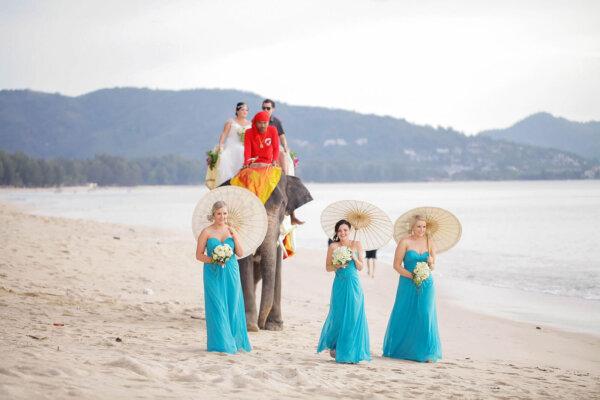 Elephant Wedding @ Beach